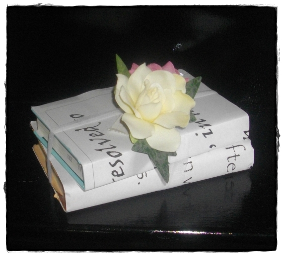 Covered Jane Austen novels.